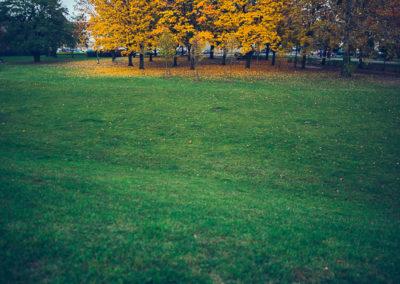 jesienna wyspa
